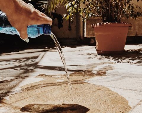 Ampolla d'aigua per a gossos / DGM