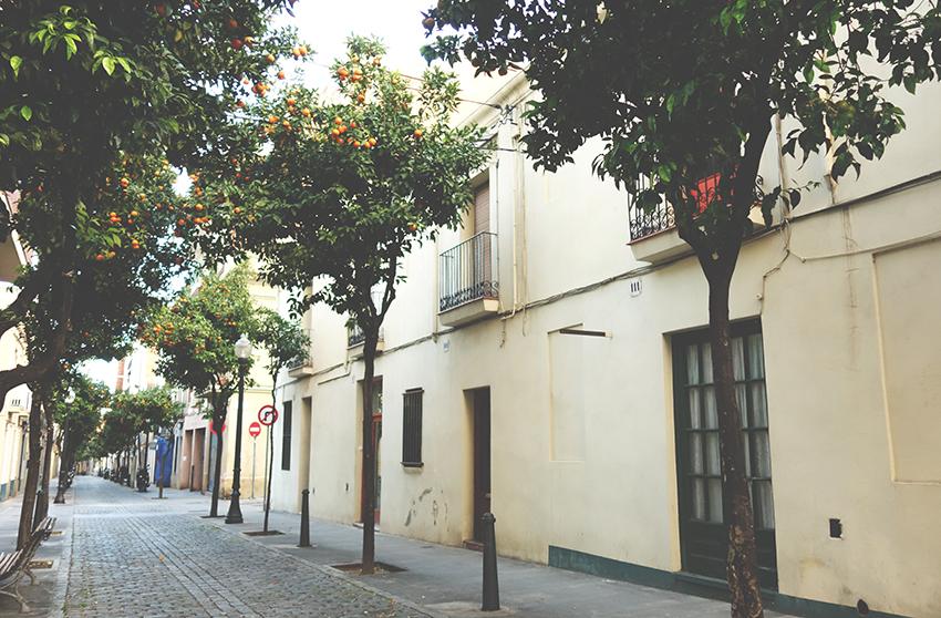 Les cases afectades del carrer de Pons i Gallarza / DGM