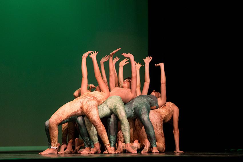 El grup de l'Escola de Dansa Spin, interpretant la coreografia /  MWFotografía